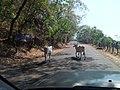 San Miguel Department, El Salvador - panoramio (1).jpg