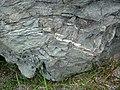 Sandorite lamprophyre (Sandor Dike, Neoarchean, 2.703 Ga; Route 17 roadcut northeast of Wasp Lake & north of Wawa, Ontario, Canada) 7 (48341247486).jpg