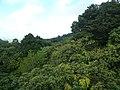 Sankt Lucia - panoramio - georama (41).jpg
