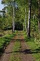 Schnaakenmoor FFH Gebiet 15.jpg