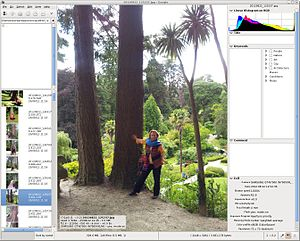Geeqie - Image: Screenshot Geeqie 1.0