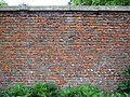 Section of the wall in Scampston Hall walled garden - geograph.org.uk - 457661.jpg
