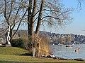 Seebad Tiefenbrunnen 2014-02-20 15-54-39 (P7800).JPG