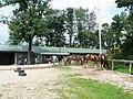 Seven Springs Horses.jpg