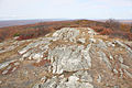 Shawangunk Formation High Point SP NJ.jpg