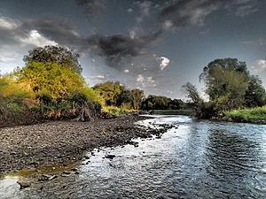 Shields River - Lower Shields River
