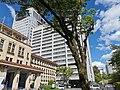 Shizuoka Prefectural Office (7).jpg