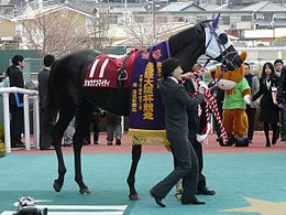 Shonan-mighty20120401.jpg