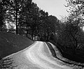 "Sir Hugh Montagu Allan's driveway at ""Ravenscrag"" (II-143387).jpg"