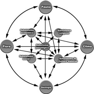 sistemico significato