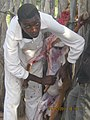 Slaughtering a goat.jpg