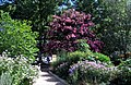 Smithsonian Gardens in July (20061845016).jpg