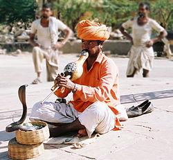 Snake charmer.jpg