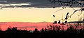 Sonnenaufgang (51618660).jpeg