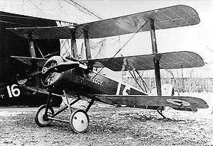 Triplane - The Sopwith Triplane, the first triplane to see service in World War I.