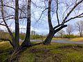 Sovetskiy rayon, Krasnoyarsk, Krasnoyarskiy kray, Russia - panoramio (13).jpg