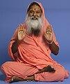 SriSwamji.jpg