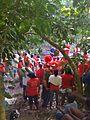St. Andrew Parish, Jamaica - panoramio.jpg