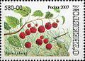 Stamps of Uzbekistan, 2007-23.jpg