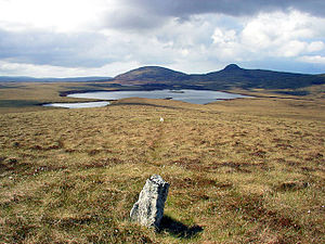 Na Fir Bhrèige - Image: Standing Stones on Blathaisbhal geograph.org.uk 1672925