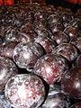 Starr 070730-7801 Prunus domestica.jpg