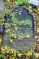 Stary cmentarz żydowski w Cieszynie16.JPG