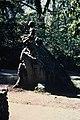 Statue of George Washington Carver as a boy sitting on a rock at George Washington Carver National Monument. (7aae41b0560643079097ac2ba2dcc60c).jpg