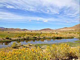 Steamboat Creek (Nevada)