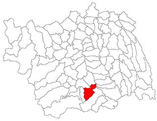 Ștefan cel Mare, Bacău Commune in Bacău, Romania