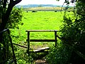 Stile on Church Path, Westbury - geograph.org.uk - 899028.jpg