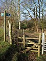 Stile on Frithelstock Footpath 10 - geograph.org.uk - 701309.jpg