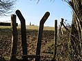 Stile with a spire - geograph.org.uk - 1174017.jpg