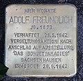 Stolperstein Emser Str 90 (Neukö) Adolf Freundlich.jpg