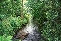 Stream north of Postern Lane - geograph.org.uk - 1356309.jpg
