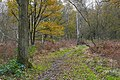 Stringers Common (geograph 4755855).jpg