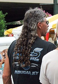 mullet - Wiktionary