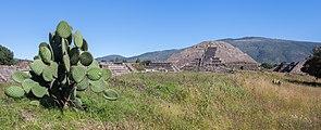 Teotihuacán, México, 2013-10-13, DD 38.JPG