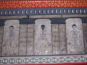 Massage - Drawings of accupressure points on Sen lines at Wat Pho temple in Thailand