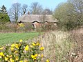 Thatched Cottages, Colemore Common - geograph.org.uk - 368853.jpg