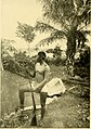 The American Egypt - a record of travel in Yucatan (1909) (14797521233).jpg