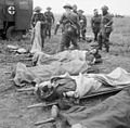 The British Army in Normandy 1944 B6005.jpg