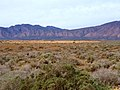 The Lavendar Hills of the North Flinders Ranges - panoramio.jpg