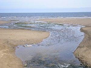 Braid Burn - The Braid Burn (called the Figgate Burn towards its end) enters the sea
