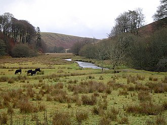 Simonsbath - The River Barle at Simonsbath