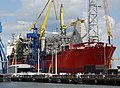 The SeaRose FPSO at Belfast.jpg
