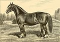 The breeds of live stock, and the principles of heredity (1887) (14594440390).jpg