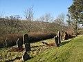 The graveyard of St. Mark's Church - geograph.org.uk - 704642.jpg