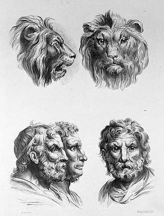 Physiognomy - Lithographic drawing illustrative of the relation between the human physiognomy and that of the brute creation, by Charles Le Brun (1619-1690).