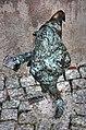 The tourist dwarf... (3740586712).jpg