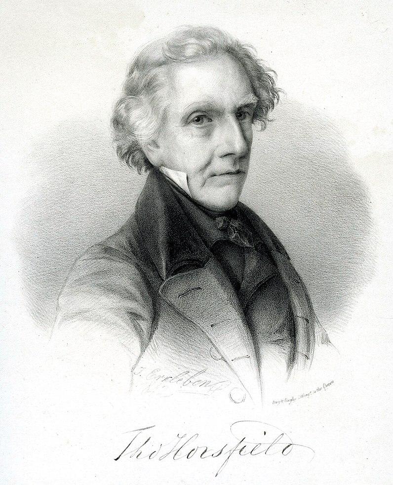 ThomasHorsfield